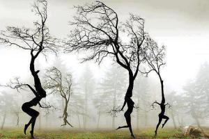 Danse ancrée